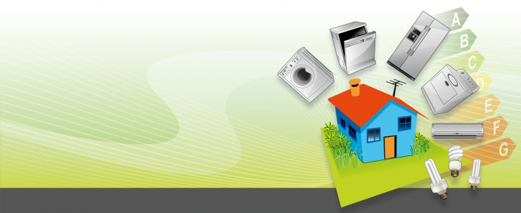 Energy Efficient Domestic Appliances