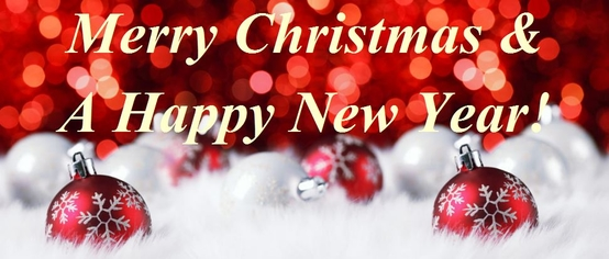 Merry Christmas and a Happy New Year from all at Dalzells!