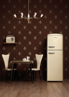 Gorenje Ambient Vintage Champagne Refrigerators NI