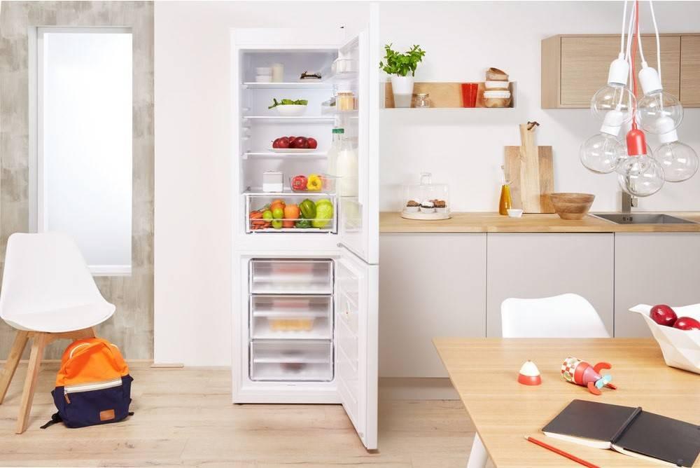 Indesit Freestanding Fridge Freezer at Dalzells